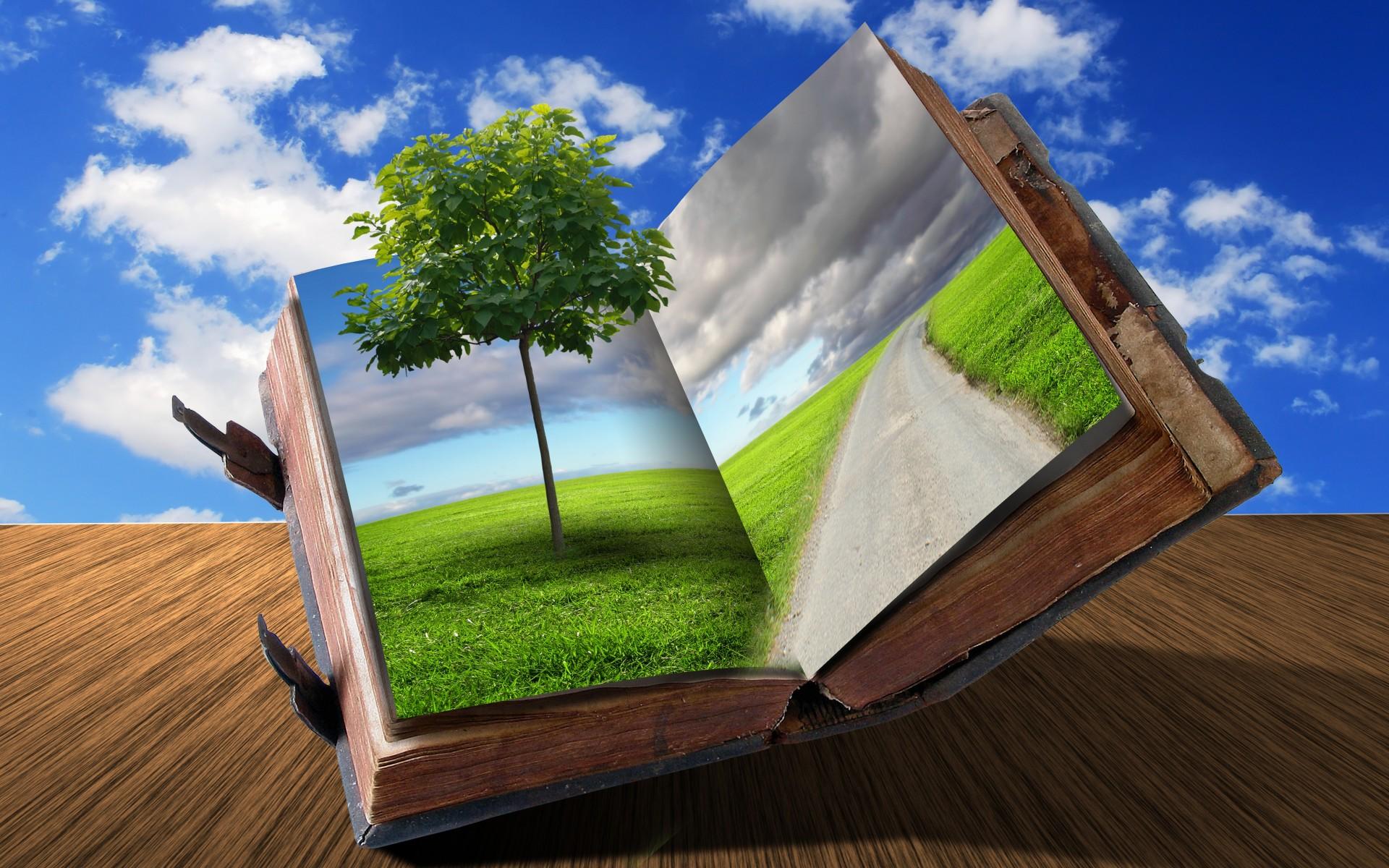 книги поле мужчина бесплатно