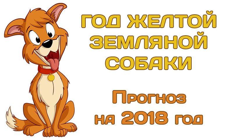 год желтой земляной собаки прогноз