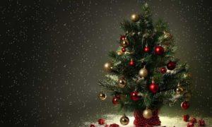 магия новогодней елки